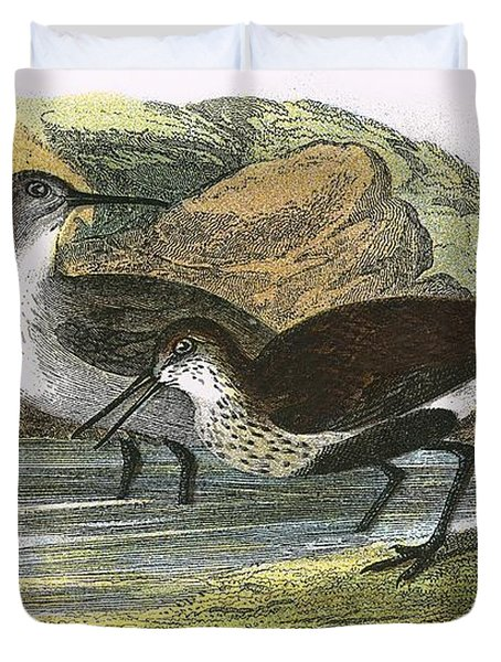 Dunlin Duvet Cover by English School