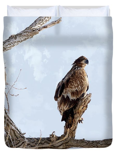 Eagle Eye Duvet Cover by Lori Tordsen