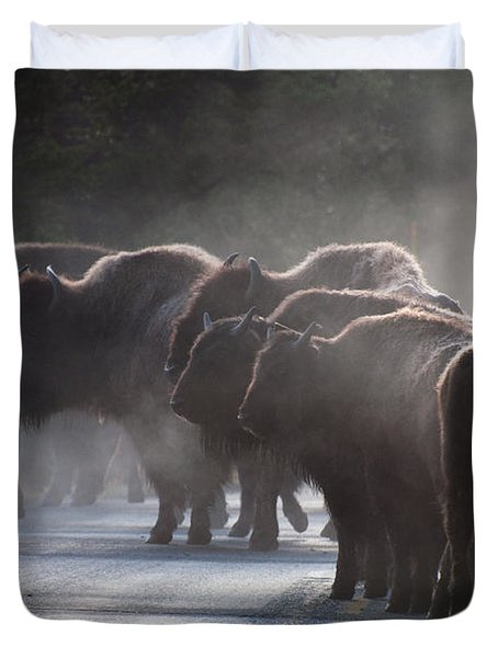 Early Morning Road Bison Duvet Cover by Bruce Gourley
