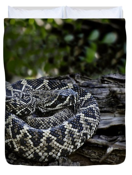 Eastern Diamondback-2 Duvet Cover by Rudy Umans