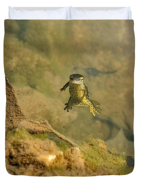 Eastern Newt In A Shallow Pool Of Water Duvet Cover by Chris Flees
