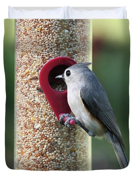 Eastern Tufted Titmouse  Duvet Cover by Carol Groenen