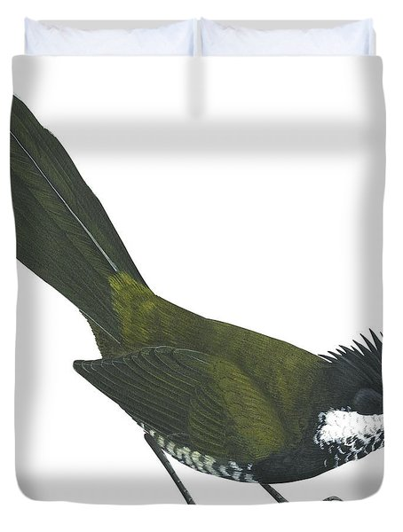 Eastern Whipbird Duvet Cover by Anonymous
