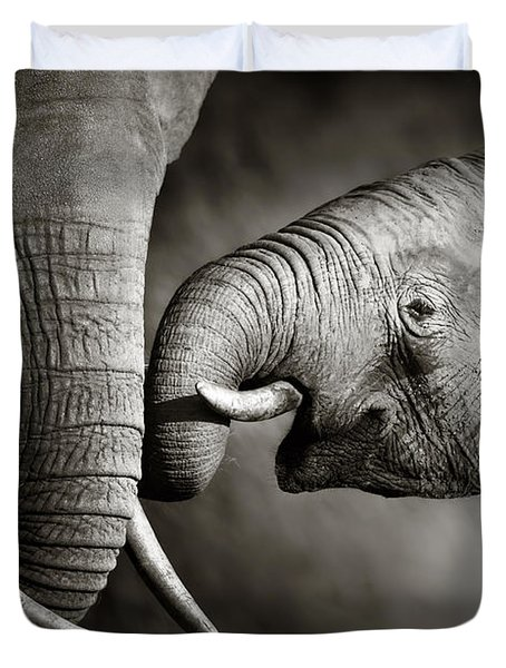 Elephant affection Duvet Cover by Johan Swanepoel