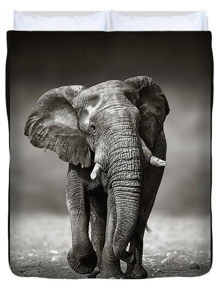Elephant Approach From The Front Duvet Cover by Johan Swanepoel