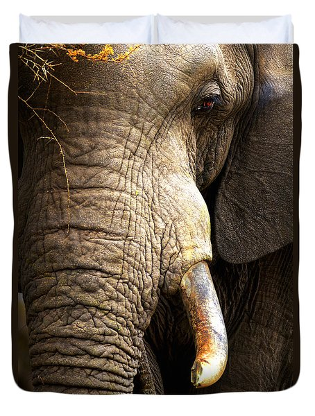 Elephant close-up portrait Duvet Cover by Johan Swanepoel