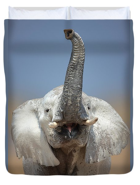Elephant portrait Duvet Cover by Johan Swanepoel