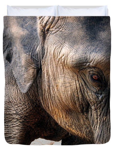 Elephant's Eye Duvet Cover by Justin Woodhouse