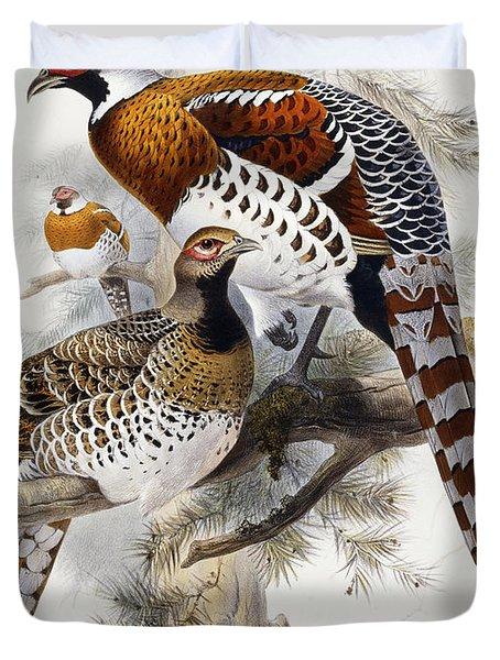 Elliot's Pheasant Duvet Cover by Joseph Wolf