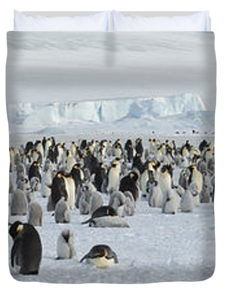 Emperor Penguins Aptenodytes Forsteri Duvet Cover by Panoramic Images
