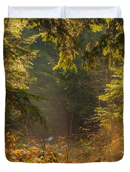 Enchanted Forest Duvet Cover by Evgeni Dinev