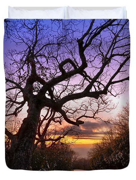 Evening Tree Duvet Cover by Debra and Dave Vanderlaan