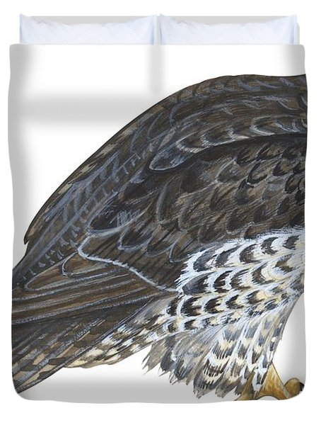 Falcon Duvet Cover by Anonymous