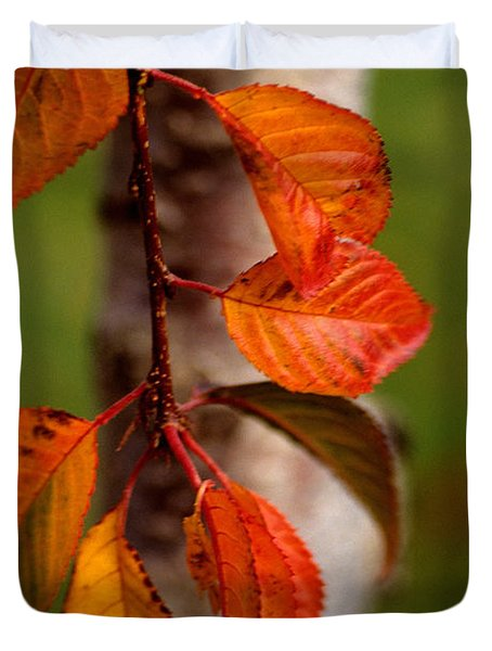 Fall Beauty Duvet Cover by Sharon Elliott