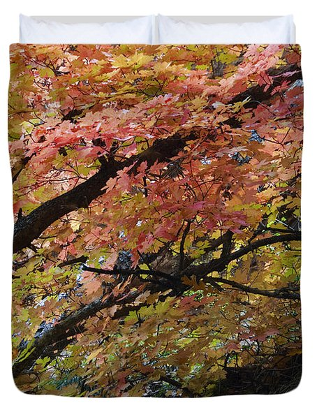 Fall Leaves at West Fork Arizona Duvet Cover by Dave Dilli