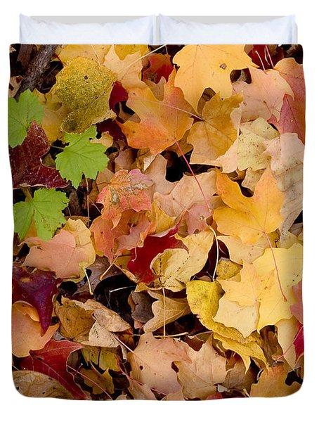 Fall maples Duvet Cover by Steven Ralser