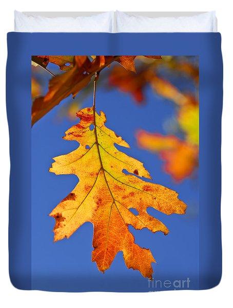 Fall Oak Leaf Duvet Cover by Elena Elisseeva