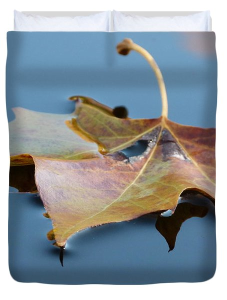 Fall Reflections Duvet Cover by Jane Ford