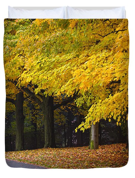 Fall road and trees Duvet Cover by Elena Elisseeva