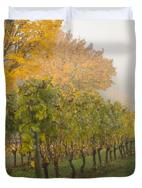 Fall Vineyard Colors Duvet Cover by Jean Noren
