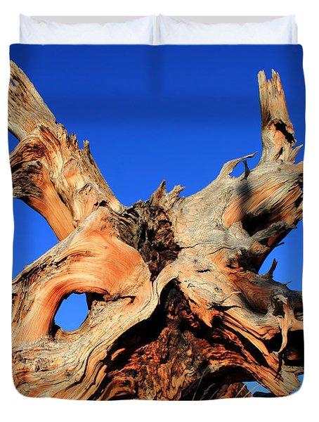 Fallen Duvet Cover by Shane Bechler
