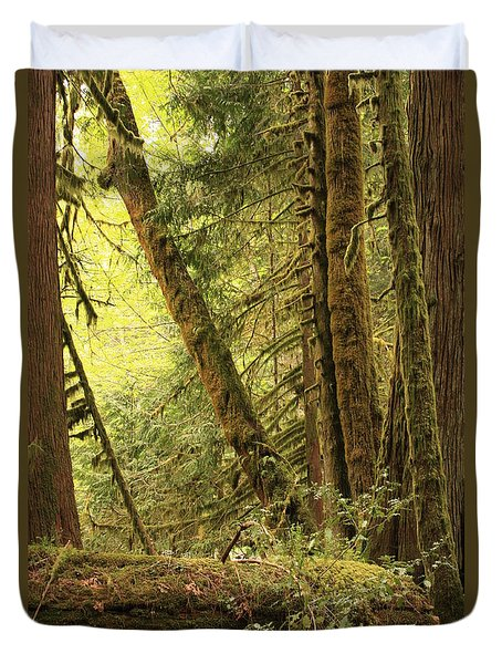 Falling Trees In The Rainforest Duvet Cover by Carol Groenen