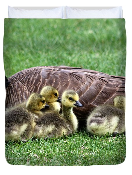Family Gathering Duvet Cover by Dana Bechler
