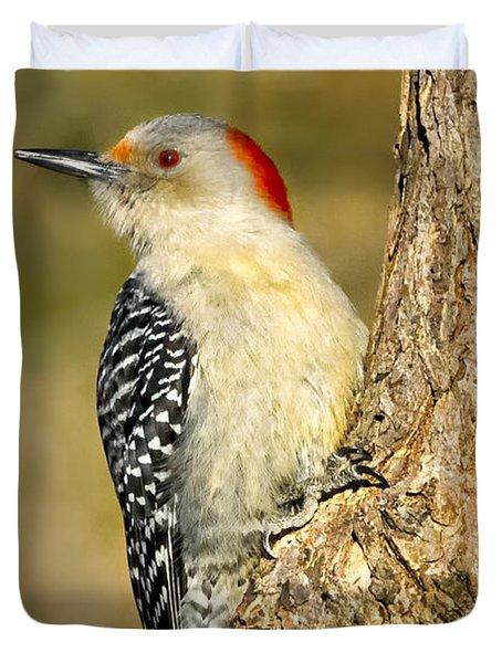 Female Red-bellied Woodpecker Duvet Cover by Bill Wakeley