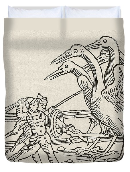 Fight Between Pygmies And Cranes. A Story From Greek Mythology Duvet Cover by English School