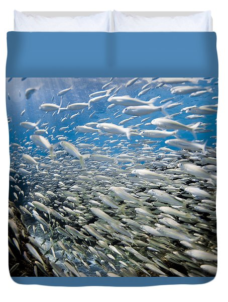 Fish Freeway Duvet Cover by Sean Davey