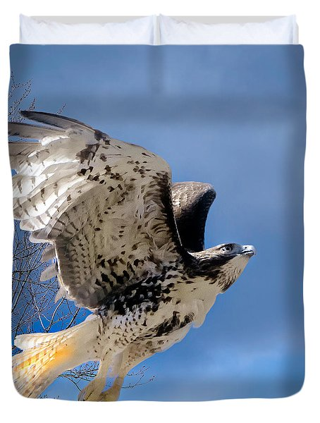 Flight Of The Red Tail Square Duvet Cover by Bill  Wakeley