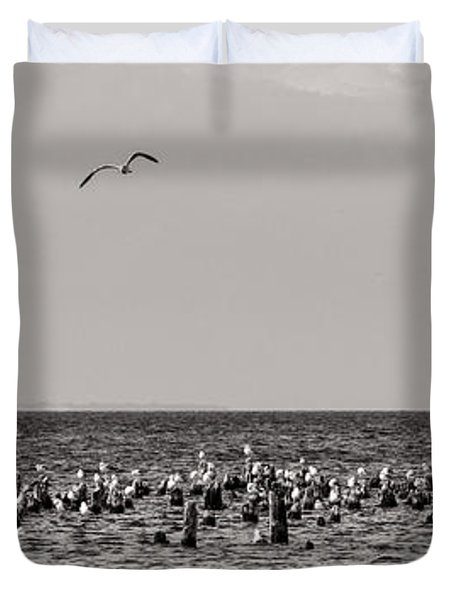 Flock Of Seagulls In Black And White Duvet Cover by Sebastian Musial