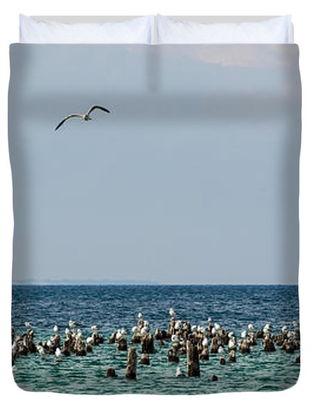 Flock Of Seagulls Duvet Cover by Sebastian Musial