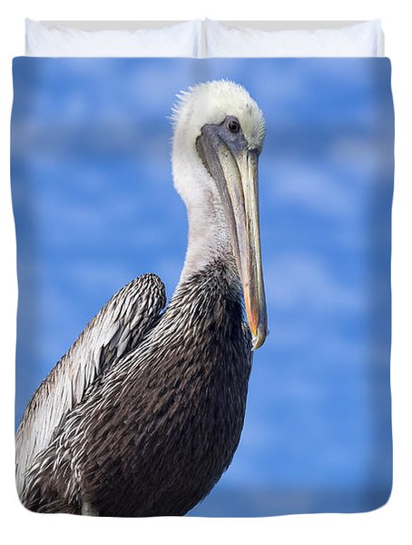 Florida Brown Pelican Duvet Cover by Kim Hojnacki