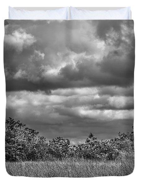 Florida Everglades 0184bw Duvet Cover by Rudy Umans