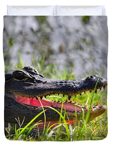 Gator Grin Duvet Cover by Al Powell Photography USA