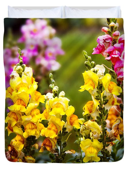 Flower - Antirrhinum - Grace Duvet Cover by Mike Savad