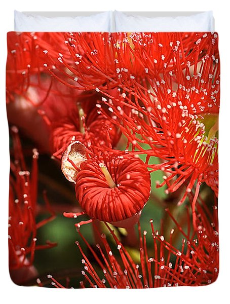 Flowers-red Eucalyptus-australian Native Flora Duvet Cover by Joy Watson