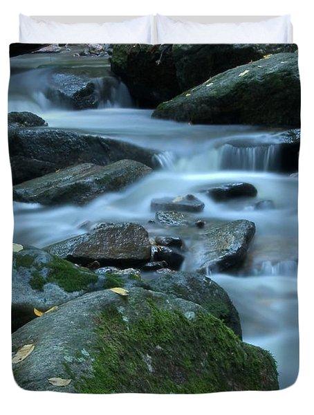 Flowing Spirit Duvet Cover by Karol Livote