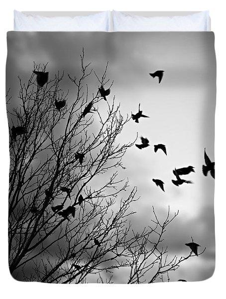 Flying Birds Duvet Cover by Elena Elisseeva