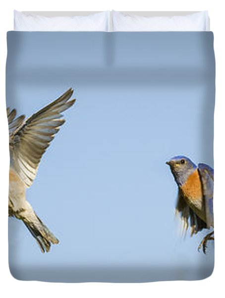 Flying Duvet Cover by Jean Noren