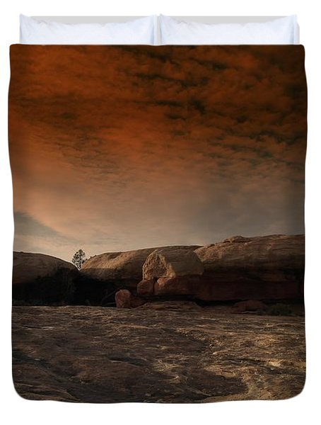 Flying Saucer Rock Duvet Cover by Jeff Swan