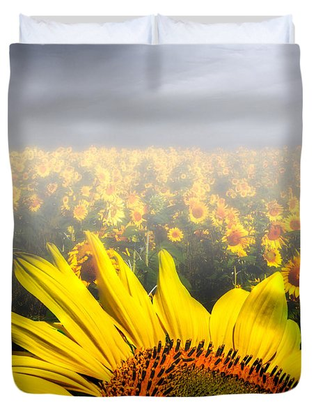 Foggy Field of Sunflowers Duvet Cover by Bob Orsillo