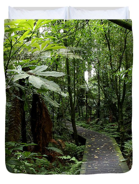Forest Path Duvet Cover by Les Cunliffe