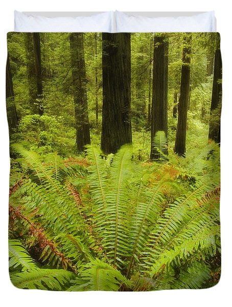 Forest Windmill Duvet Cover by Peter Coskun