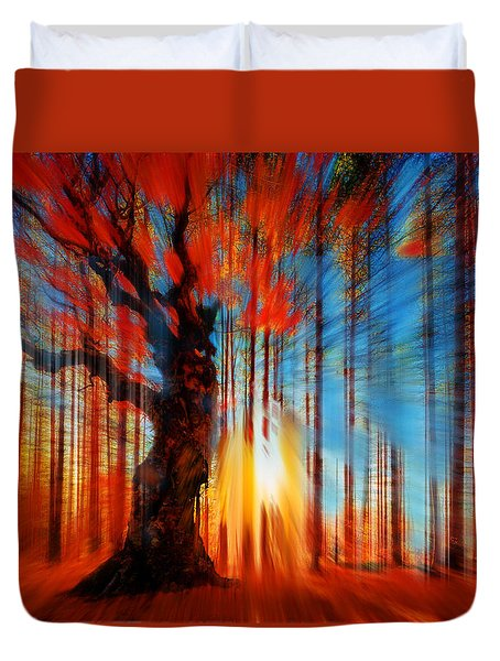 Forrest And Light Duvet Cover by Tony Rubino