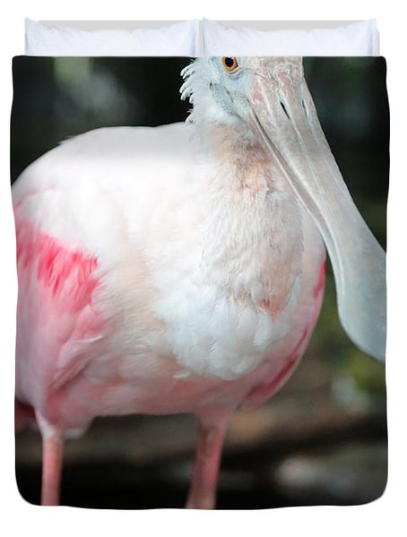 Friendly Spoonbill Duvet Cover by Carol Groenen