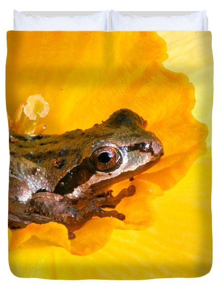 Frog And Daffodil Duvet Cover by Jean Noren