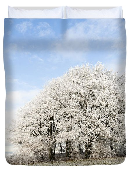 Frosted Copse Duvet Cover by Anne Gilbert