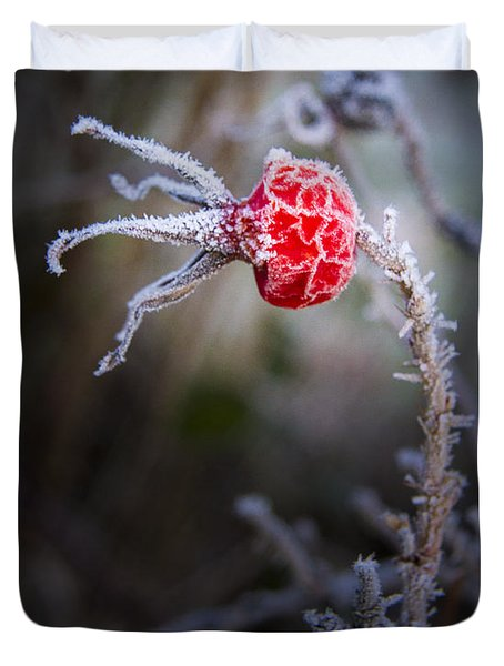 Frosted Duvet Cover by Jean Noren